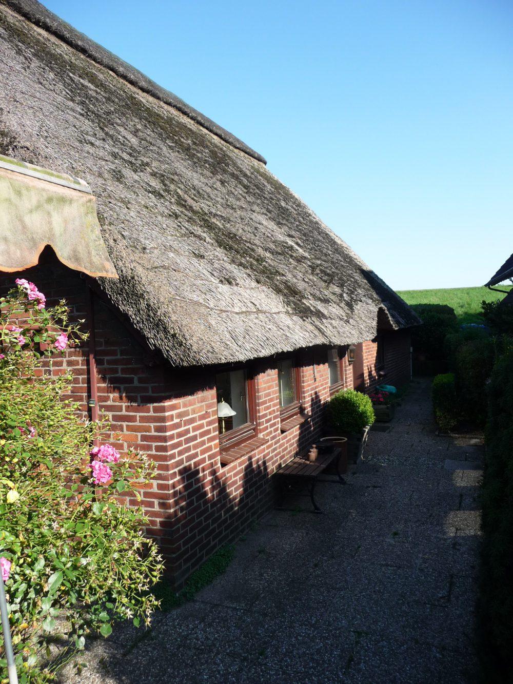 reetdachhaus-am-deich-in-altenesch-seitenansicht